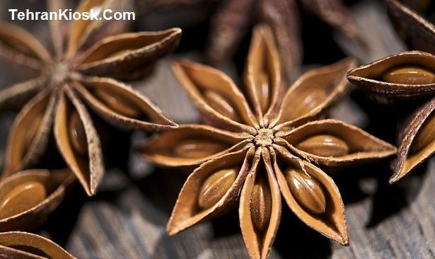 کاربردها و خواص گیاه بادیان رومی + آشنایی با گیاه با ارزش بادیان رومی