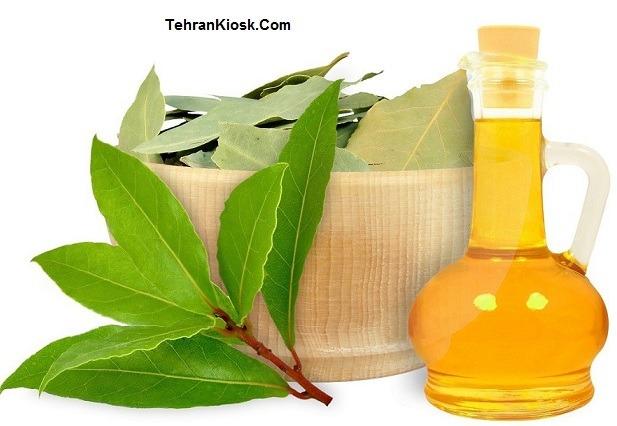 خواص و فواید روغن برگ بو در طب سنتی + مزایای دارویی و درمانی آن