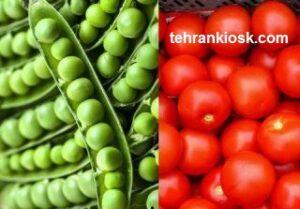 آموزش پرورش گوجه و نخود فرنگی در باغچه منزل با روش ساده