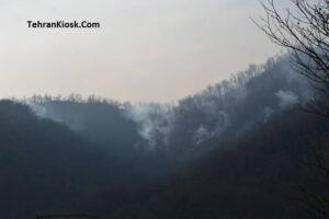 مدیرکل منابع طبیعی غرب مازندران – نوشهر از اطفای حریق در جنگل های رامسر خبر داد
