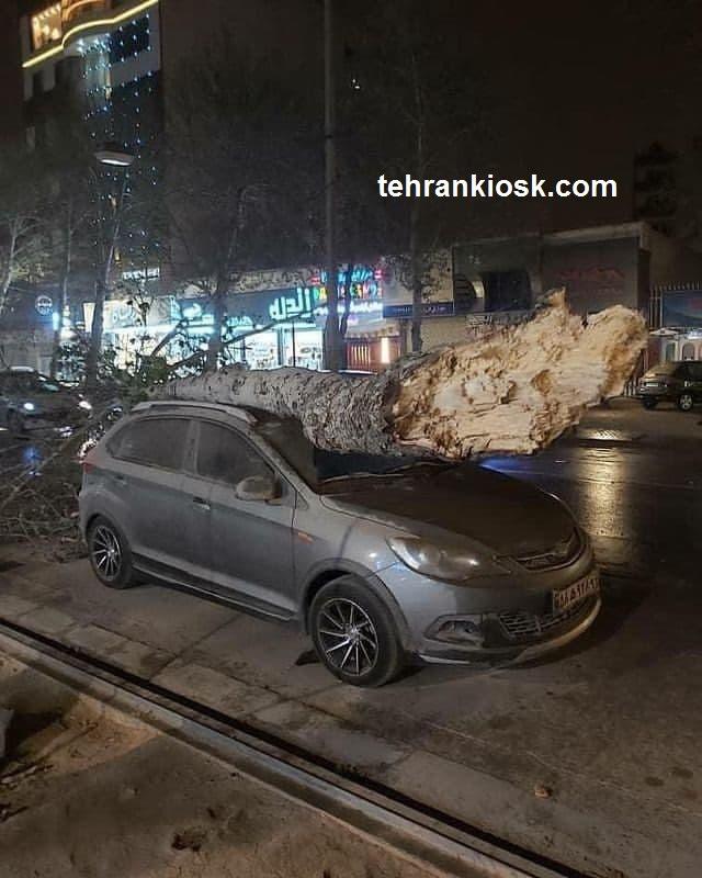 قطع سراسری برق در شیراز  و کنسل شدن پروازها بر اثر وزش شدید باد + عکس