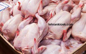 احتمالی برای افزایش نرخ مرغ در هفته های آتی وجود دارد