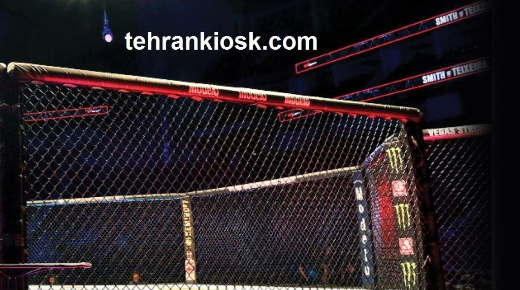 مجوز فعالیت رشته MMA در ایران توسط رئیس فدراسیون ورزشهای رزمی