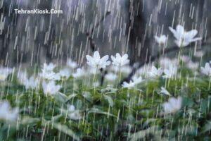 سازمان هواشناسی اعلام کرد: ورود سامانه بارشی از آسمان شمال غرب و غرب کشور